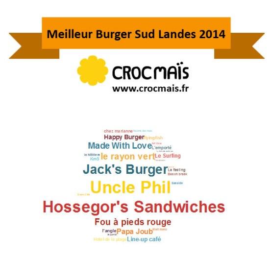 meilleur burger Sud Landes 2014